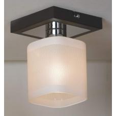 Светильник настенно-потолочный Lussole LSL-9007-01 Costanzo, 1 плафон, хром с венге, белый